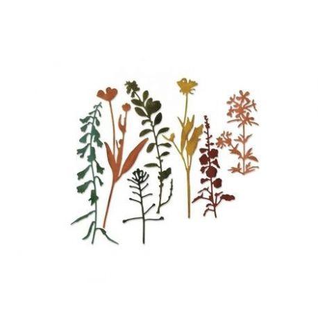 Troquel Sizzix THINLITS Wildflowers 2 by Tim Holtz