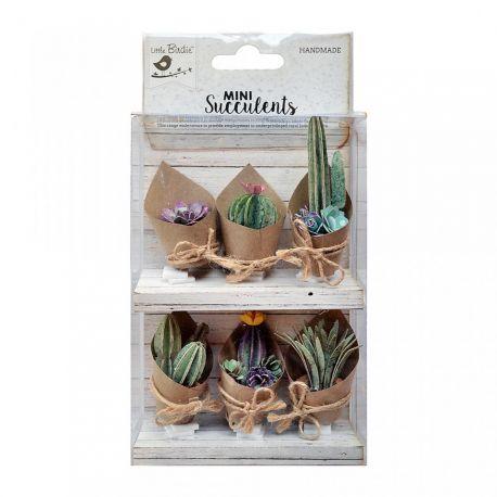 Little Birdie Set Cactus Combo 6 piezas