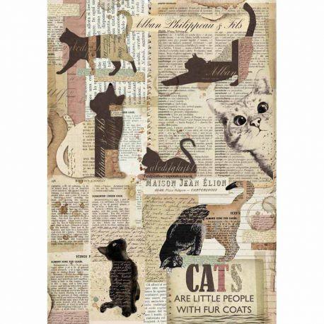 Papel de arroz DinA4 Packed Cats
