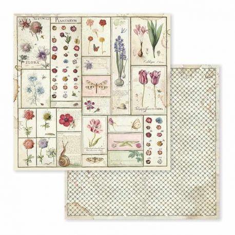 Papel de Scrap Stamperia Spring Botanic herbarium