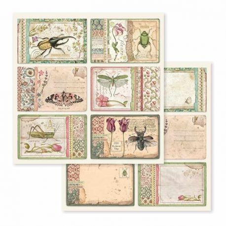 Papel de Scrap Stamperia Spring Botanic cards