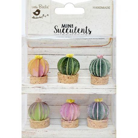 Little Birdie - Mini Suculents - Barrel Cactus