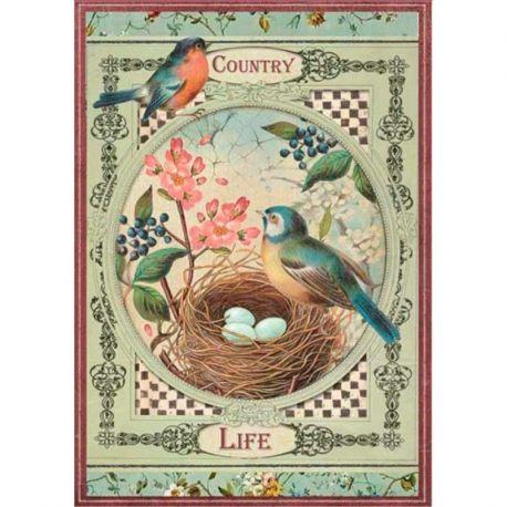 Papel de arroz DinA4 Country Life Birds
